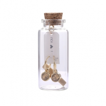 Oorbellen Message in a bottle - Gold with gold stone